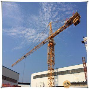 Hình ảnh Cẩu tháp HsH đầu bằng từ 8 tấn đến 16 tấn